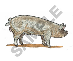MIDDLE WHITE PIG embroidery design