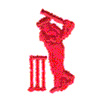 CRICKET PLAYER embroidery design