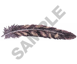 WOODPECKER FEATHER embroidery design
