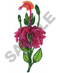 FRINGED HIBISCUS embroidery design