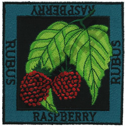 RASPBERRY embroidery design