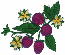 BERRIES embroidery design