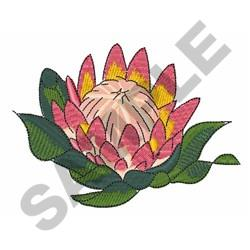 King Protea Flower embroidery design