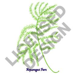 ASPARAGUS FERN embroidery design