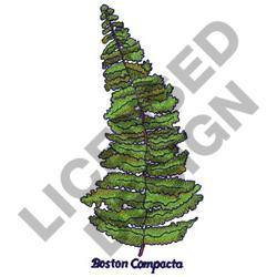 BOSTON COMPACTA embroidery design