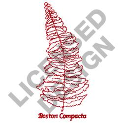 BOSTON COMPACTA embroidery design