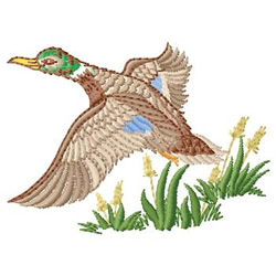Flying Mallard embroidery design