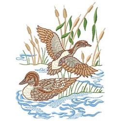Duck Scene embroidery design