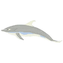 Dolphin embroidery design