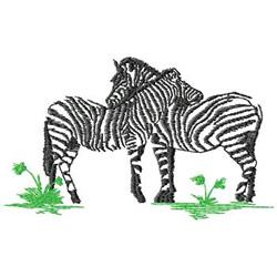 Zebras embroidery design