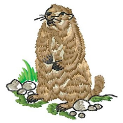 Woodchuck embroidery design