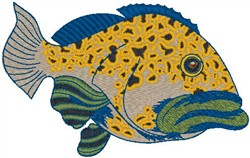 Grouper embroidery design