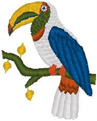 Toucan Perched embroidery design