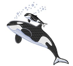 Killer Whale embroidery design