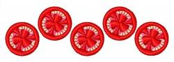 Tomato Slices embroidery design
