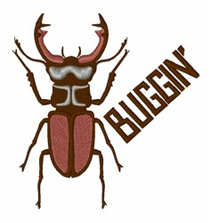 Buggin Beetle embroidery design
