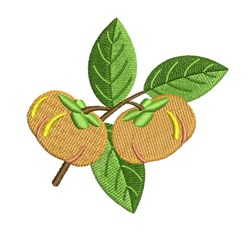 Persimmon Fruit embroidery design