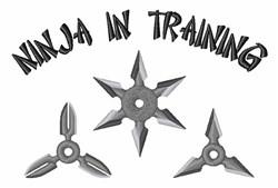 Ninja Training embroidery design