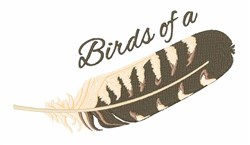 Birds Feather embroidery design