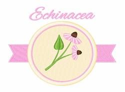 Echinacea embroidery design