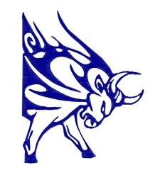 Raging Bull embroidery design