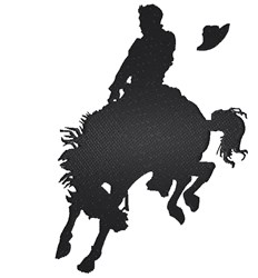 Bucking Horse embroidery design
