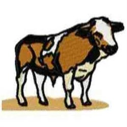 Bull Ox embroidery design