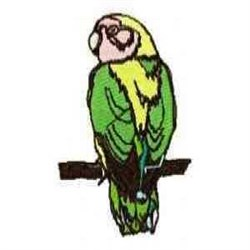 Amazon Parrot embroidery design