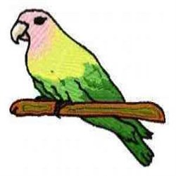 Pink Head Parrot embroidery design