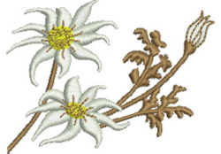 Flannel Flowers embroidery design