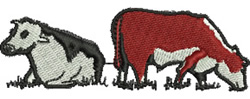 Grazing Cows embroidery design