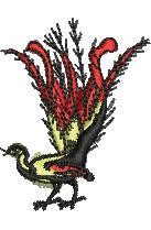 Lyrebird embroidery design