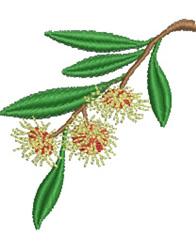 Hakea Flower embroidery design