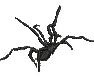 Funnel Web Spider embroidery design