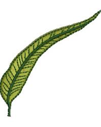 Eucalyptus Leaf embroidery design