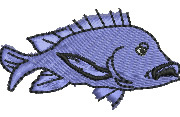 Blue Snapper embroidery design