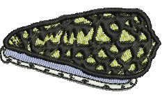 Cowrie Shell embroidery design