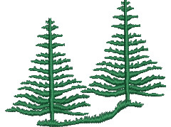 Norfolk Pine Trees embroidery design