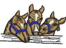 Horses embroidery design