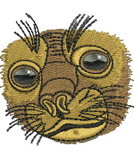 Seals face embroidery design