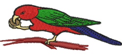 King Parrot embroidery design