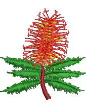 Grevillea Flower embroidery design