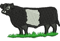 Belted Galloway Cow embroidery design