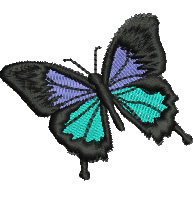 Ulysses Butterfly embroidery design