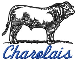 Charolais embroidery design