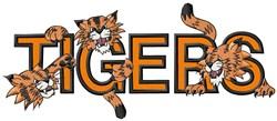 Tigers Mascot Applique embroidery design