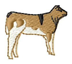 Shorthorn Calf embroidery design