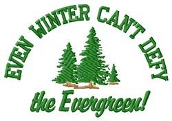 Even Winter embroidery design