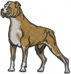 Boxer Standing embroidery design