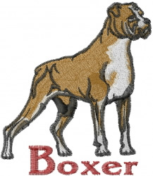 Boxer embroidery design